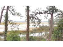 View 700 Daniel Ellis Dr # 11104 Charleston SC