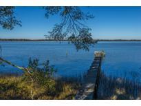 View 5850 Pecanetta Rd Wadmalaw Island SC