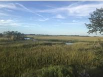 View 5 Waterway Island Dr Isle Of Palms SC